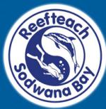 Reefteach